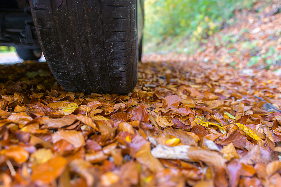 preparing your car for fall hollenshades auto repair